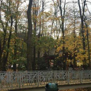 Jesień w Rymanowie-Zdroju.