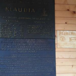 Skład i zdrowotne właściwości rymanowskiej wody Klaudyna.